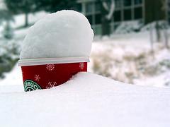snow_bucks.jpg