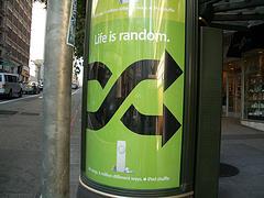 random8.jpg